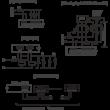 Rievtech PR-24DC-DA-R PLC (relés kimenet)